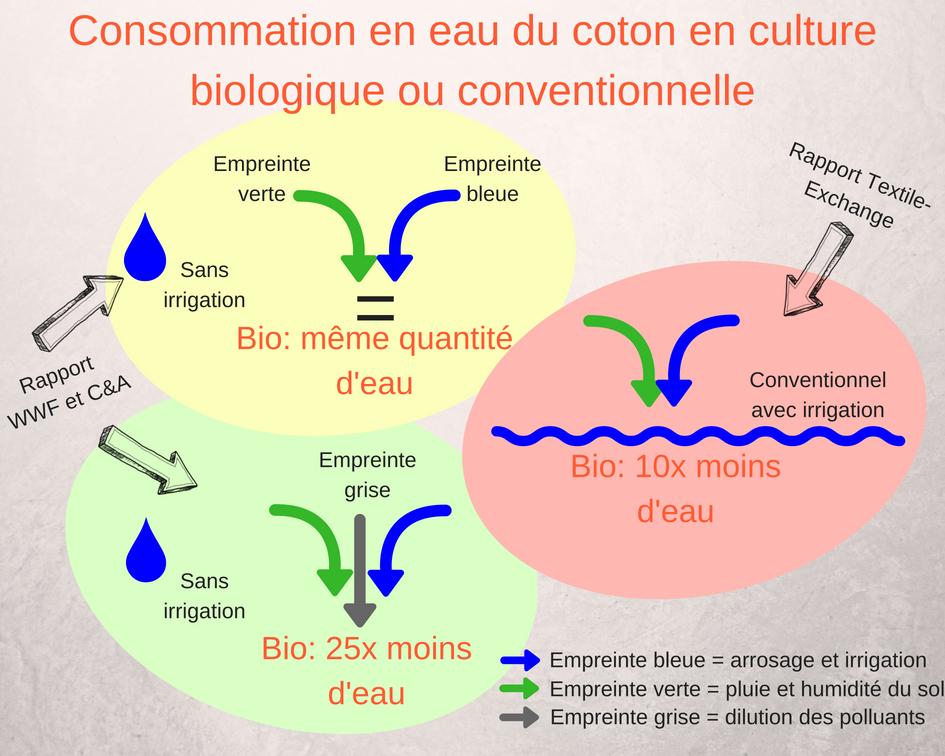 Comparaison de la consommation en eau du coton biologique et conventionnel irrigation empreinte grise polluant assèchement des nappes phréatiques