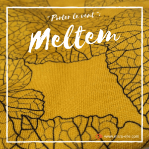 Molleton bio vendu au mètre Mars-ELLE jaune Moutarde GOTS