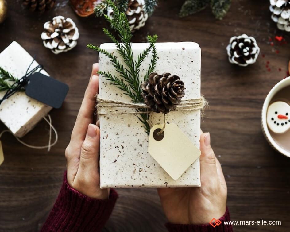 Bon cadeau tissu bio au mètre pour une couturière à Noël Anniversaire jersey bio imprimé sweat molleton Mars-ELLE